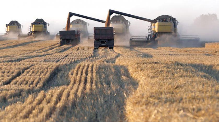 الحكومة السورية تستورد القمح الروسي بسعر مضاعف