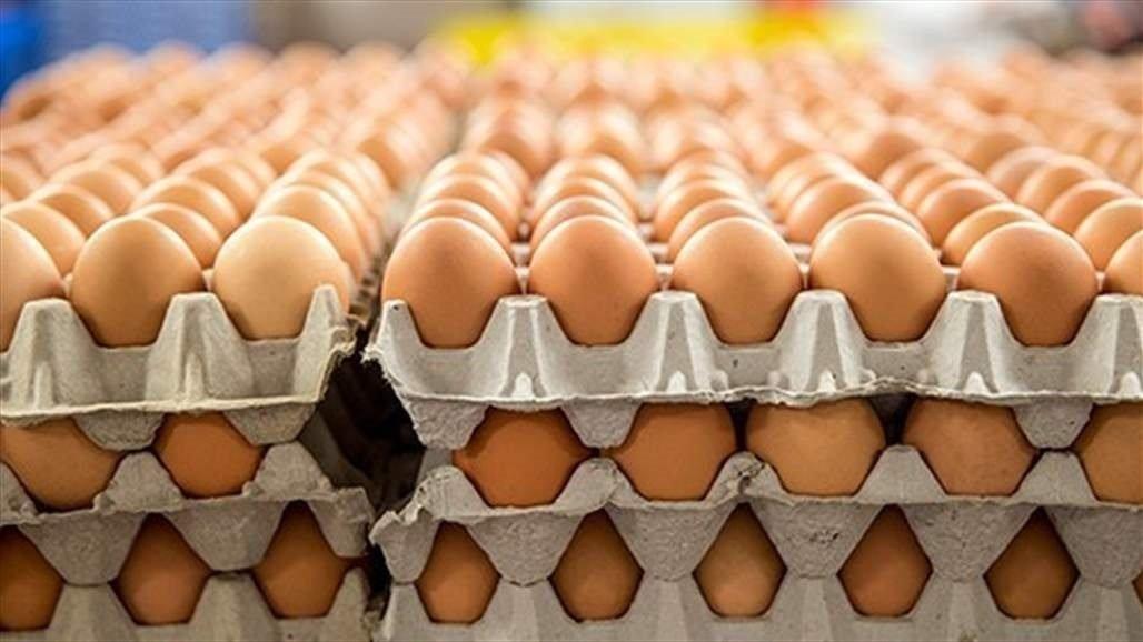 مسؤول حكومي يبرر ارتفاع أسعار البيض