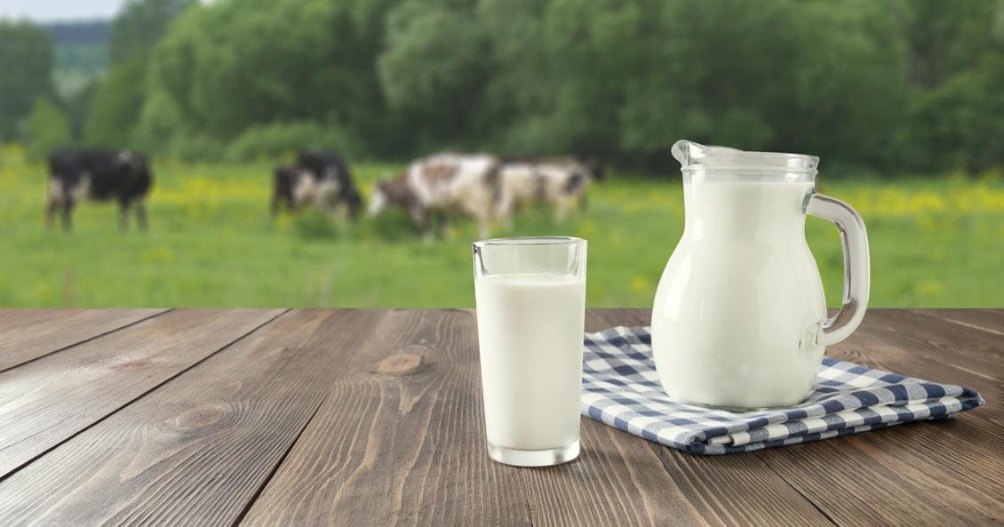 أسباب ارتفاع أسعار الحليب ومشتقاته في سوريا